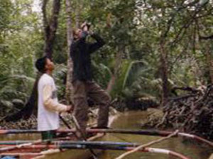 mangrove swamp forest which can be visited in a small boat.
